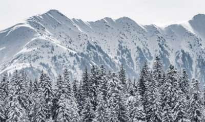 Blick vom Hotel Peaks Place auf schneebedeckte Berge in Laax