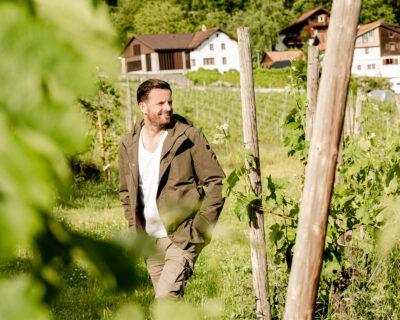 Weinanbaugebiet in der Schweiz